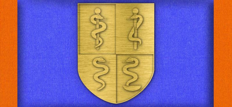 Deutscher SanOA e.V. Ehrung Gold
